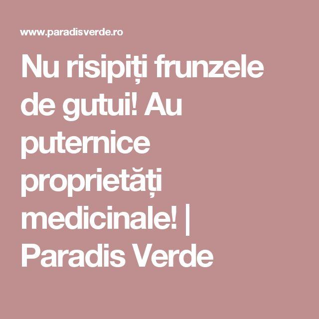 Nu risipiți frunzele de gutui! Au puternice proprietăți medicinale! | Paradis Verde