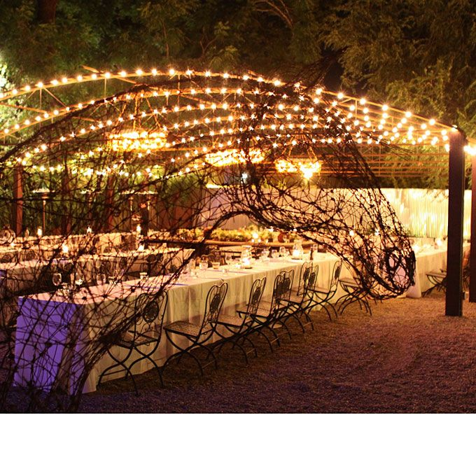 decoration lights for weddings 59 best napa california wedding venues ideas images on 3413