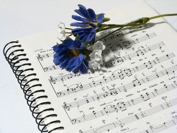 ¿Quién puede vivir sin música?