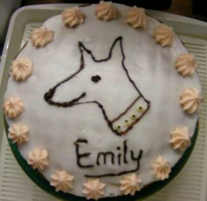 My whippet birthday cake
