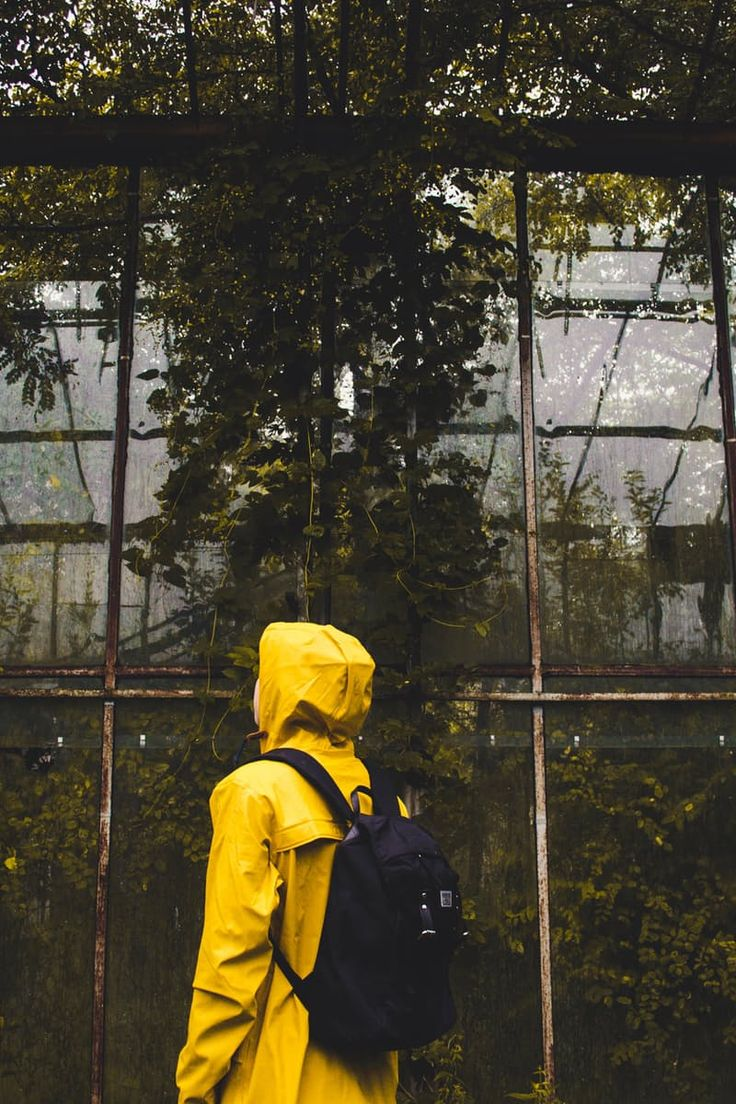 Shallow Focus Photography of Person Wearing Yellow Raincoat and Black Backpack Standing in Front Green Leaved Trees during Daytime