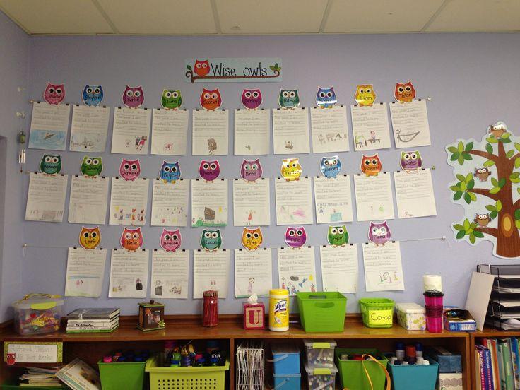 Owl student work display