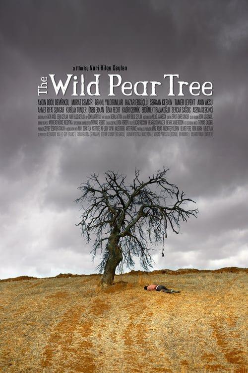 Hd 1080p The Wild Pear Tree full movie Hd1080p Sub English