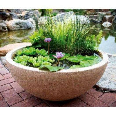 best 25+ container water gardens ideas on pinterest | diy ... - Patio Container Garden Ideas