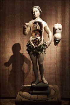 124 best Santos, Manikins and Anatomical Figures images on ...