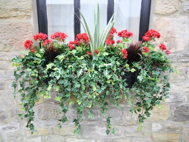Artificial Geranium Window Box Window Boxes Artificial