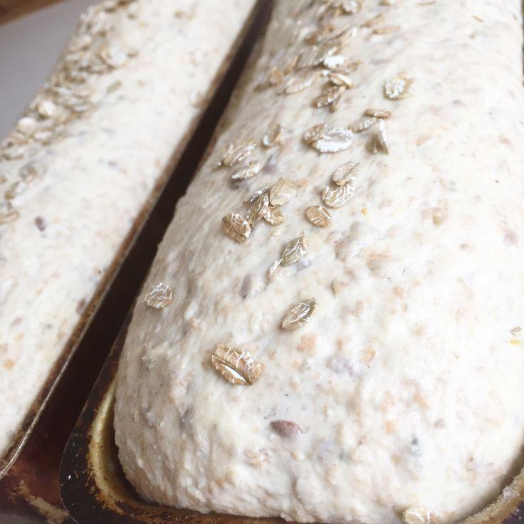 Vi spiser mange brød hver uke og hjembakt brød er populært. Her er et godt hverdagsbrød som er både sunt, saftig og grovt. Prøv det. Du vil ikke angre. Ingredienser: 7 dl vann 1 dl appelsinjuice 1 dl havregryn 1 dl speltflak/speltgryn 1 dl rugflak/ruggryn 1 dl sammalt rug grov 1 dl sammalt spelt grov … Continue reading Hverdagsbrød →
