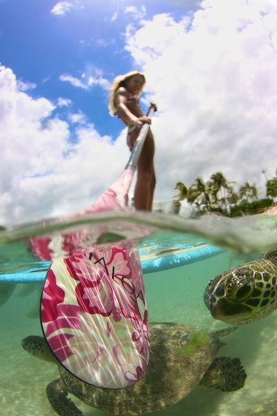 #SUP Surfing with turtles!