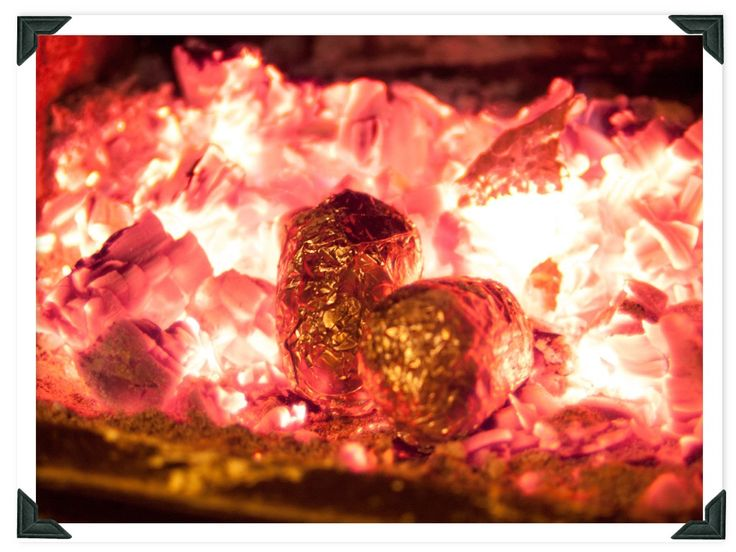 Learn the secrets of using your wood fire to cook with