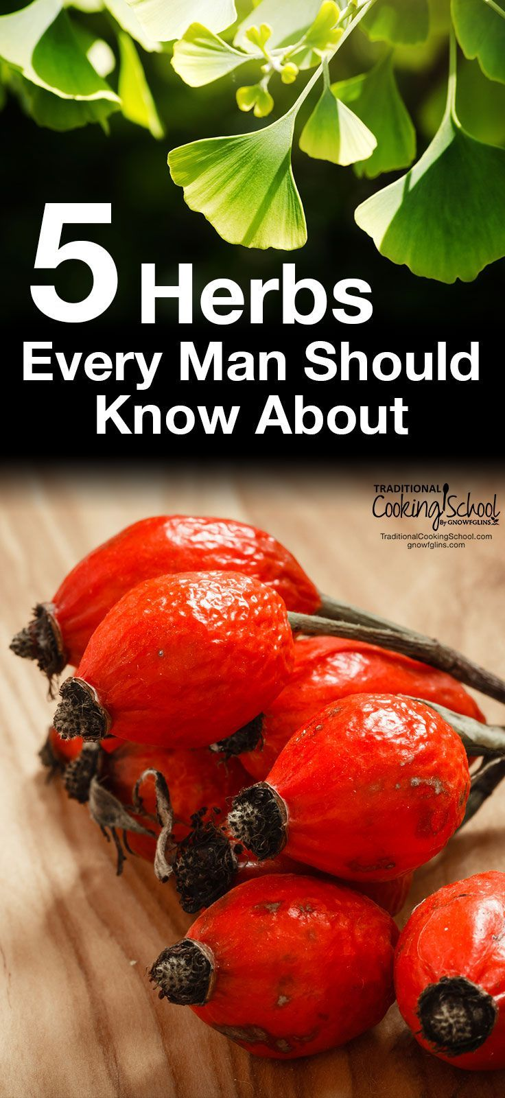 5 Herbs Every Man Should Know About   Do you want to be stronger and healthier? Are you looking to increase your energy and protect yourself from disease? For hundreds of years, men have been using herbs to do just that. Here are 5 herbal powerhouses that every man should know about to improve health and vitality.   TraditionalCookingSchool.com