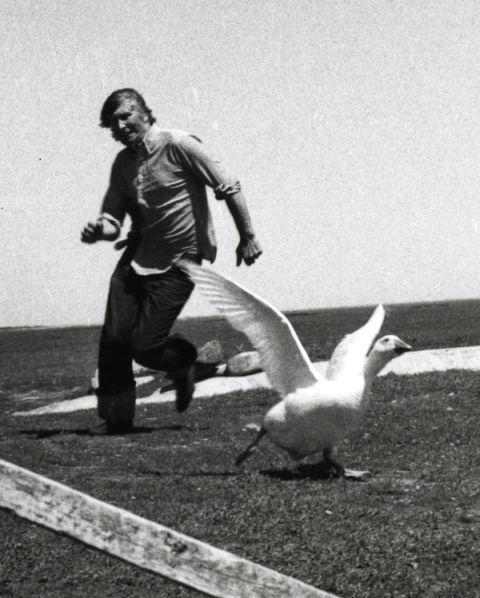Tomi Ungerer est (et) un drôle d'oiseau