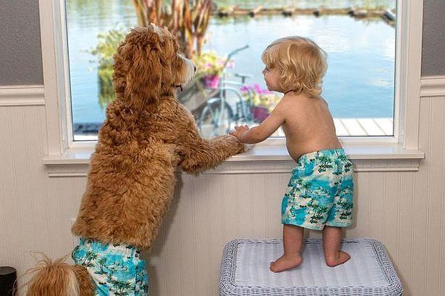 Az egyforma pizsamás kisfiútól és kutyájától te is elolvadsz majd