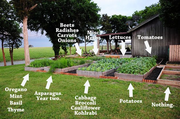 I want a raised beds like these some day.