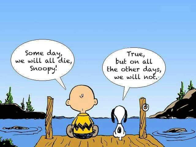 Snoopy.  one day we will die, but on all the other days we will not #hwg