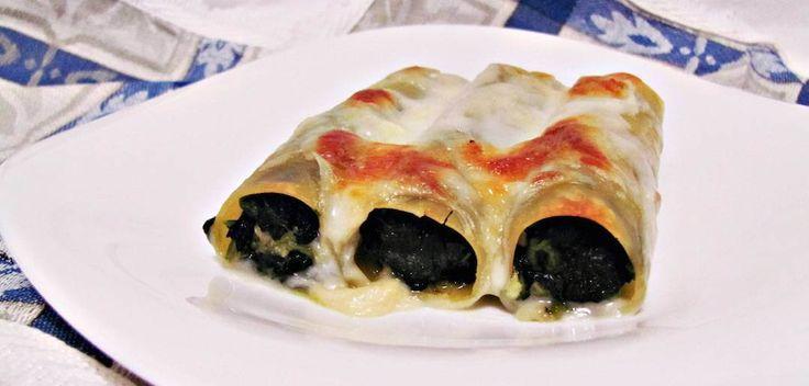 Cannelloni de Espinafre e Requeijão