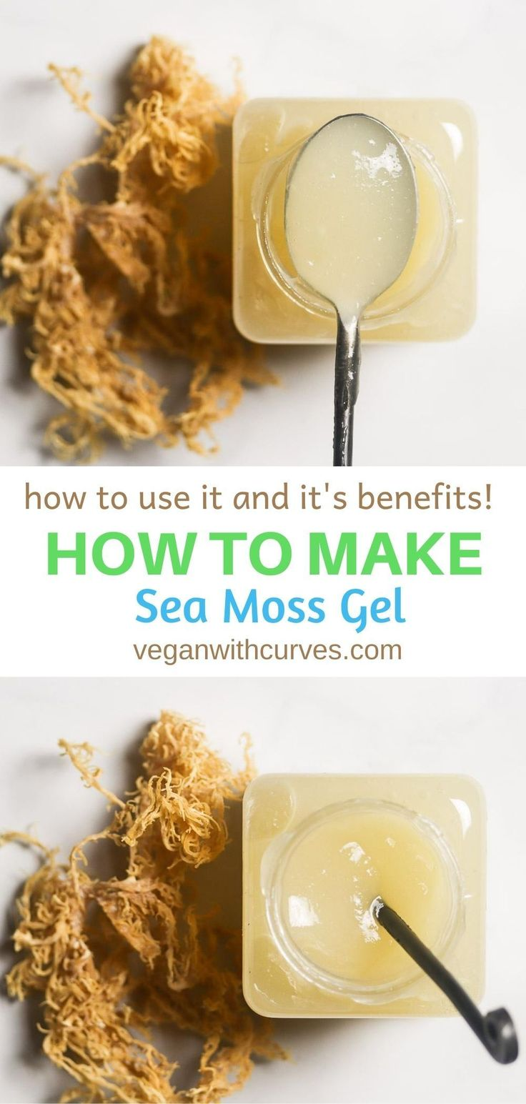 The Ultimate Guide on How to Make Sea Moss Gel (and how to