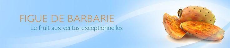 La figue de barbarie est un fruit aux vertus incroyables a retrouver sur la parapharmacie Viveo.