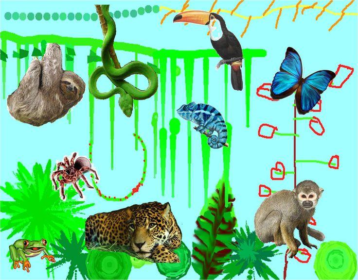 Mathilda's Jungle