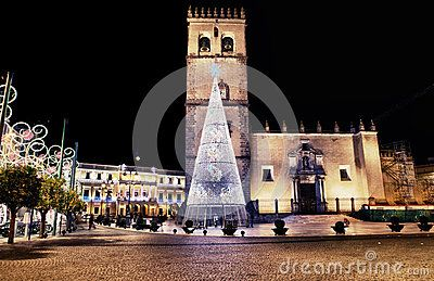 Cathedral square with christmas tree