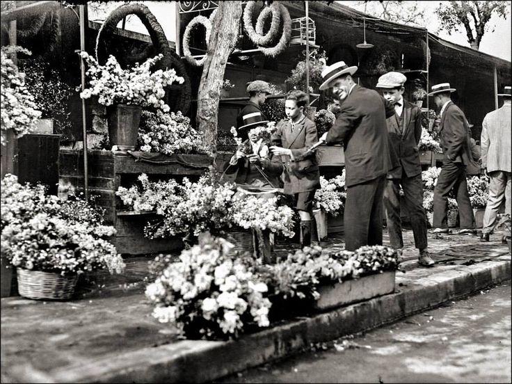Τα παλιά ανθοπωλεία στο Σύνταγμακ, επί της Βασιλίσσης Σοφίας. Αθήνα 23 Απριλίου 1928