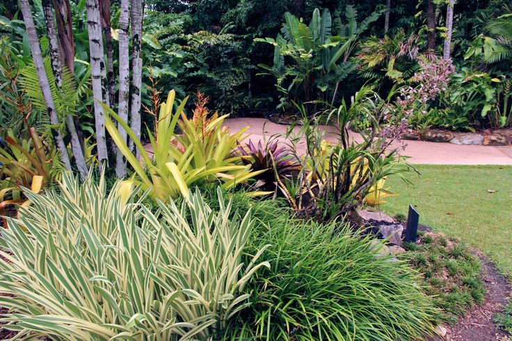 Tropical Island Beach Ambience Sound: 41 Best Images About Plant Combinations
