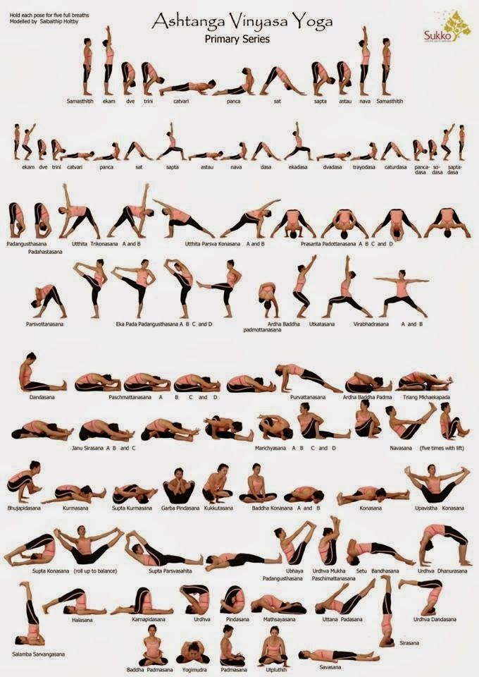 Different Yoga Poses And Asanas With Images Ashtanga Vinyasa Yoga Vinyasa Yoga Ashtanga Yoga