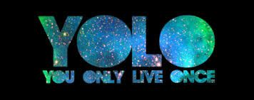 Image result for yolo