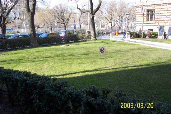 Nincs ideje kivárni mire kinő a fű? Akkor kiváló megoldás az Ön számára a gyepszőnyeg!  Gyorsan és egyszerűen kizöldül a kertje! http://www.globalgarden.hu/szolgaltatasaink/fuvesites-igeny-szerint-gyepszonyegfektetes/