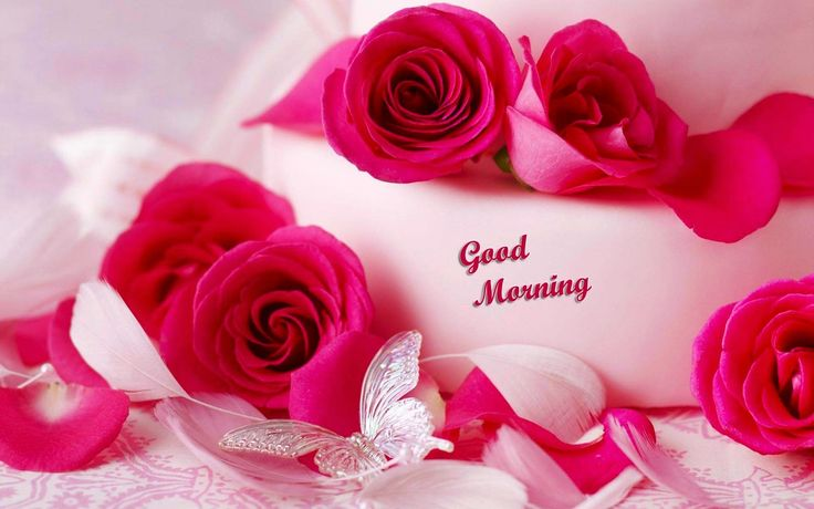 20+ Good Morning Images HD and Wallpapers