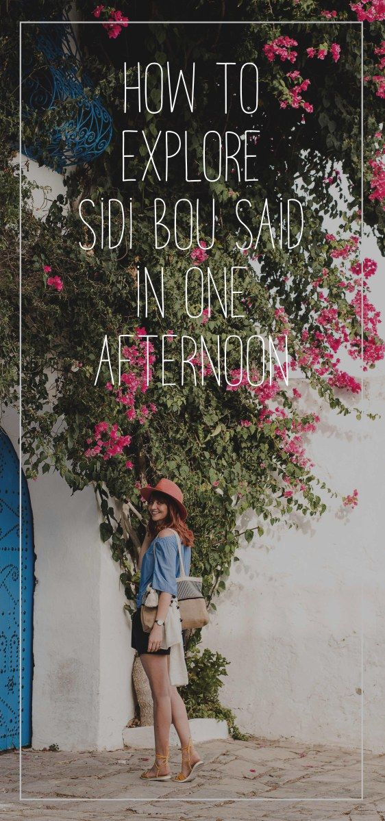 Things to do in Tunis, Explore Sidi Bou Said in one afternoon