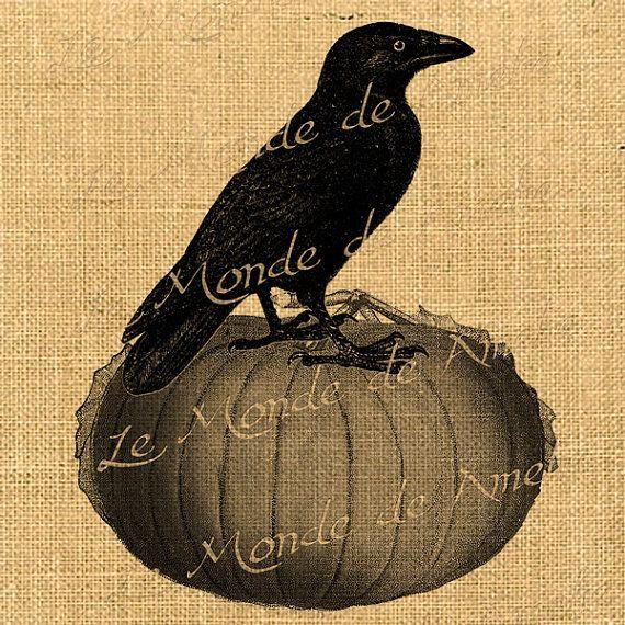 vintage halloween crow and pumpkin - Halloween Crows