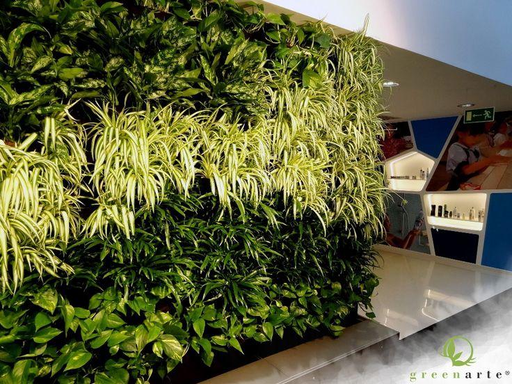 Modułowe zielone ściany w Katowickim biurze - luty 2013
