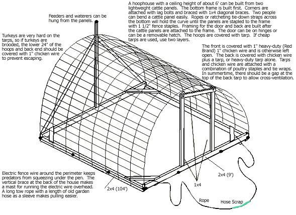 Starting Free Range Chicken Farming Business Plan (PDF)