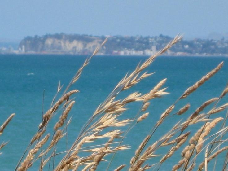 Stunning Hawkes Bay
