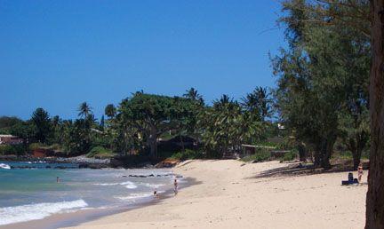 love. love. surfing in maui