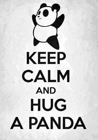"Not only would I hug a panda.  I'd tuck that sucker under my arm like a football an start running ""He's MY panda now"""