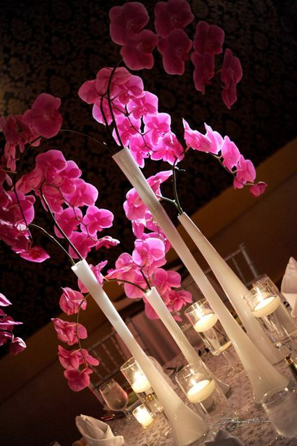 hot pink #phalaenopsis #orchids #centerpieces - thinking 3 stems per table, but may go up to 9 either in 1 or 3 vase