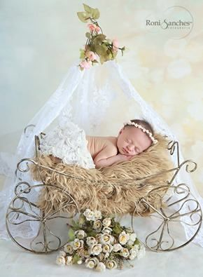 carruagem acessórios fotografia newborn aberta (oe)