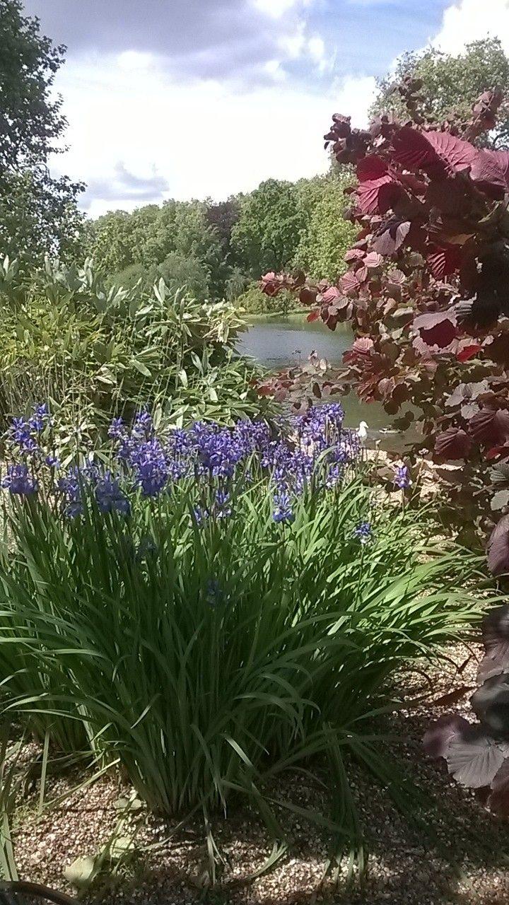 St James's Park - Londra