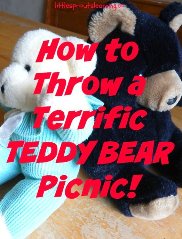 Throwing an awesome teddy bear picnic for your kids does not have to be complicated or expensive. Keep it simple and everyone will have more fun!
