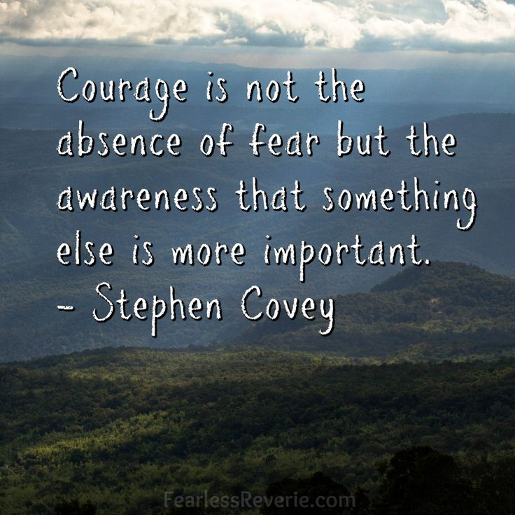Courage is not the absence of fear but the awareness that something else is more important. - Stephen Covey