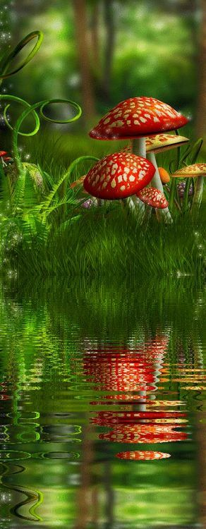 Red mushrooms reflected in water.