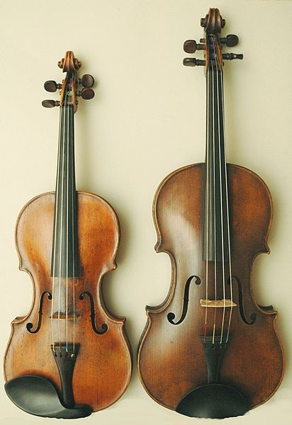 Violin (on the right) Viola (on the left) These look like mine.. except the chin rest on the viola.