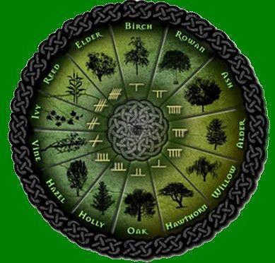 The zodiac signs of the celtic tree zodiac are Birch( the achiever ) , Rowan ( the thinker ), Ash (the enchanter ), Alder ( the trailblazer ), Willow ( the ...