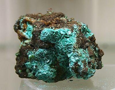 Chalkophyllit - Mineralogisches Museum Bonn (7295).jpg - Chalkophyllit (veraltet auch Kupferglimmer, Blättriges Olivenerz, Tamarit, Erinit) ist ein eher selten vorkommendes Mineral aus der Mineralklasse der Arsenate. Er kristallisiert im trigonalen Kristallsystem mit der chemischen Zusammensetzung Cu9Al[(OH)12|(SO4)1,5|(AsO4)2]·18H2O