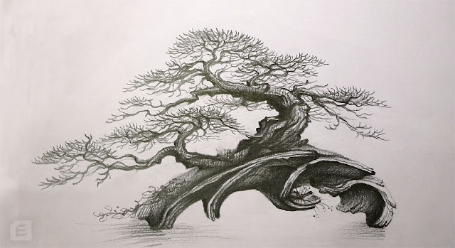 Nice concept. Sketching out your tree can help a great deal: don't worry if you're not a good artist! Allows you to view the tree w/ certain branches removed or added or moved. A essential tool in your bonsai progress