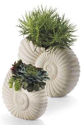 Nautilus planter nautilus i need dis and planters for Nautilus garden designs