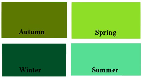 COLOR ANALYSIS QUESTIONNAIRE & TIPS in Color Theory & Analysis Forum