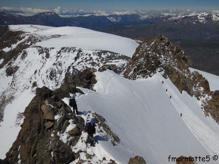 Pic de la Grave 3669m. Oisans, Isère, France, rando-alpinisme.