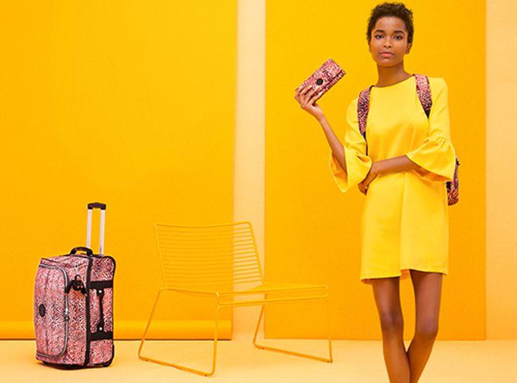 Kipling hat für jeden etwas!  Bei Eboutic.ch kannst du Taschen der Marke Kipling bis zu 70% reduziert kaufen. Egal ob du eine Reisetasche oder eine einfache Schultertasche suchst, Kipling hat für jeden Geschmack etwas dabei!  Greif hier zu: http://www.onlinemode.ch/kipling-taschen-bis-zu-70-reduziert/
